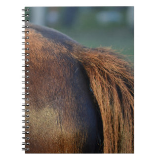 Brown pony hindquarters and tail spiral notebooks