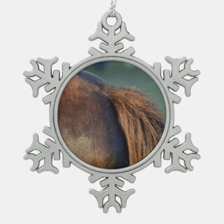 Brown pony hindquarters and tail ornaments