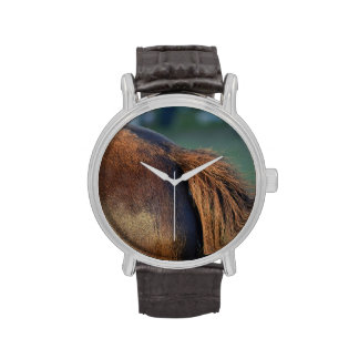 Brown pony hindquarters and tail wristwatch