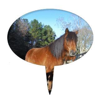 Brown pony turquoise Sky Cake Picks