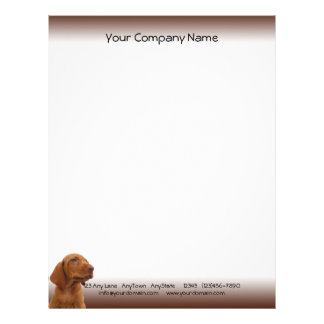Brown Puppy Looks Out for You Letterhead