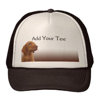 Brown Puppy on a Brown Gradient Trucker Hat
