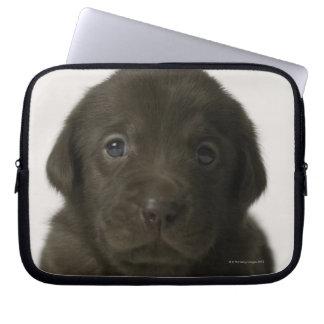 Brown puppy, portrait, close-up laptop sleeve