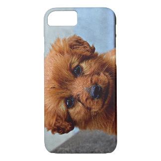 Brown Puppy Portrait Photo iPhone 8/7 Case