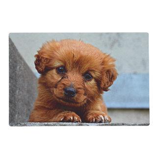 Brown Puppy Portrait Photo Placemat