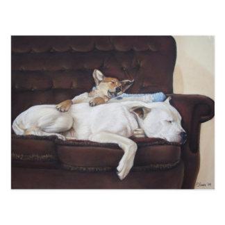 brown puppy white american bulldog realist art postcard