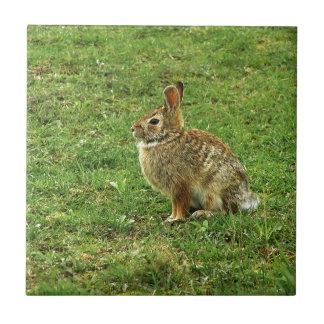 Brown Rabbit Ceramic Tile
