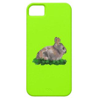 Brown rabbit I-Phone5 Case iPhone 5 Cases