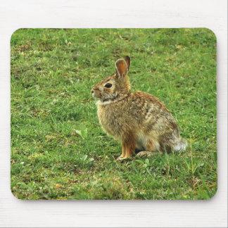 Brown Rabbit Mousepad