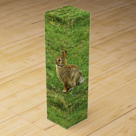 Brown Rabbit Wine Boxes
