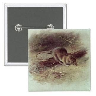 Brown Rat  1918 Button
