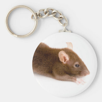 Brown Rat Keychain