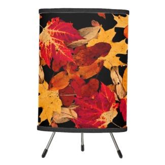 Brown Red Orange Yellow Autumn Foliage
