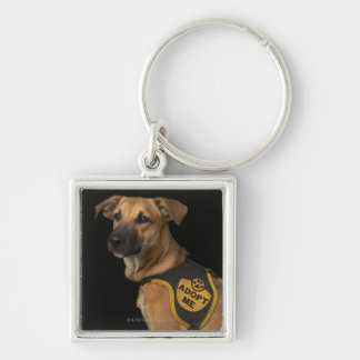Brown rescue dog with adopt me vest keychain