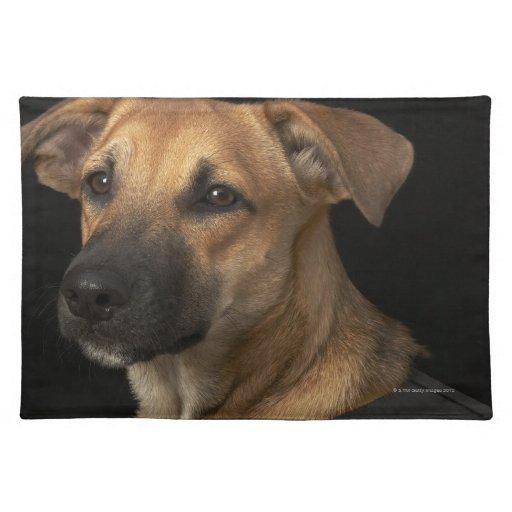 Custom Adopt Me Dog Vest