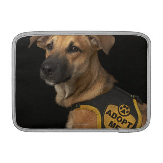 Brown rescue dog with adopt me vest sleeve for MacBook air