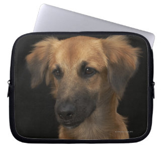 Brown resuce dog with black nose on black computer sleeve