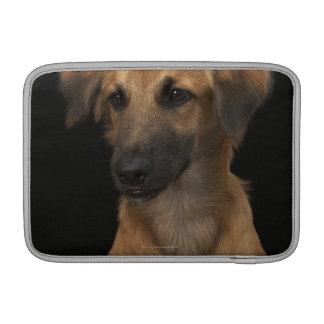 Brown resuce dog with black nose on black MacBook sleeve