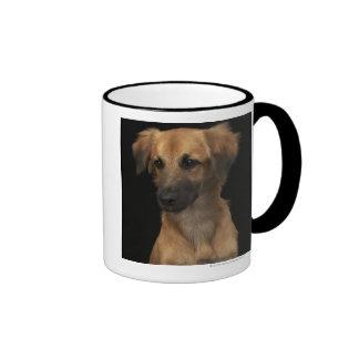 Brown resuce dog with black nose on black ringer mug