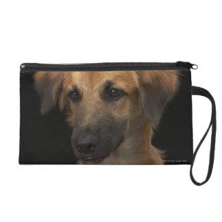 Brown resuce dog with black nose on black wristlet purse