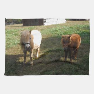 """Brown rubio, dos caballos miniatura, """"pequeño potr toalla"""