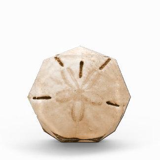 Brown Sand Dollar Acrylic Award