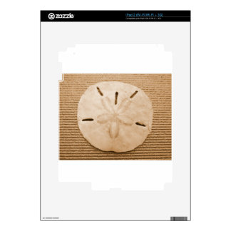 Brown Sand Dollar Decal For iPad 2