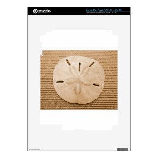Brown Sand Dollar iPad 3 Decals