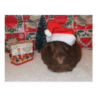 Brown Santa Pig Postcard
