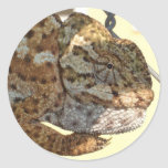 Brown Scaled Chameleon Stickers
