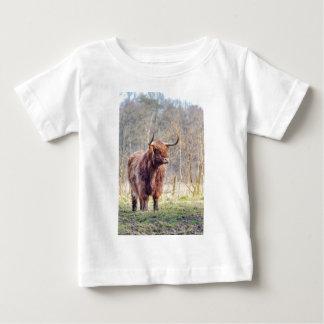 Brown scottish highlander cow standing in spring baby T-Shirt