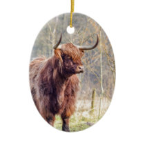 Brown scottish highlander cow standing in spring ceramic ornament