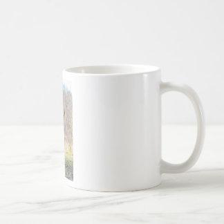 Brown scottish highlander cow standing in spring coffee mug