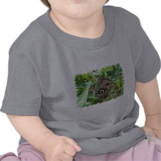 Brown se fue volando la camiseta del bebé de la