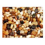 Brown shiny beach pebbles print postcard