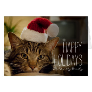 Brown short-haired tabby cat card