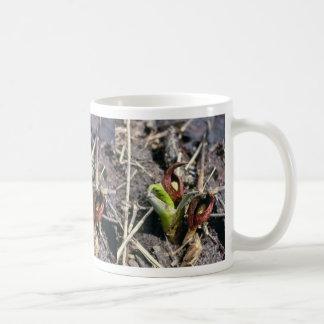 Brown Skunk Cabbage (Symplocarpus Foetidus) flower Coffee Mug