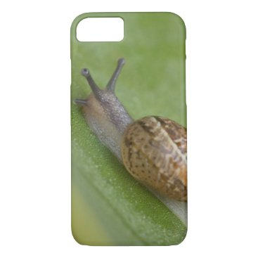 USA Themed Brown snail on dew covered leaf iPhone 7 case