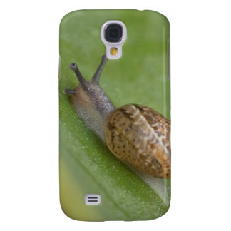 Brown snail on dew covered leaf samsung galaxy s4 case