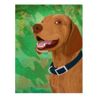 Brown sonriente Vizsla en fondo verde Tarjeta Postal