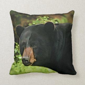 Brown sospechó el oso almohada