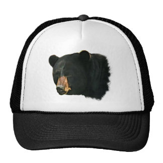 Brown sospechó el oso gorras de camionero