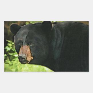 Brown sospechó el oso pegatina rectangular