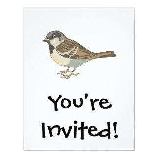 brown sparrow card