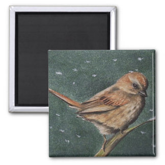 Brown Sparrow Magnet
