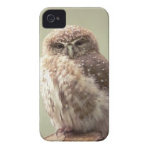 Brown Speckled Owl iPhone 4 Case
