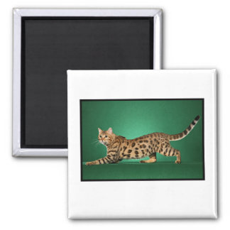 Brown Spotted Bengal Magnet