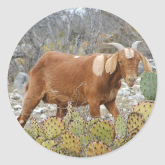 Brown spotted goat classic round sticker