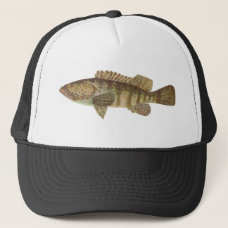 Brown-Spotted Rock Cod - Epinephelus tauvina Trucker Hat