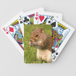 Brown Squirrel Deck of Cards Bicycle Playing Cards